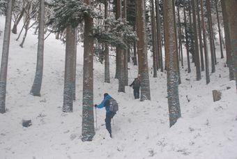関西/滋賀/雪の比良山系
