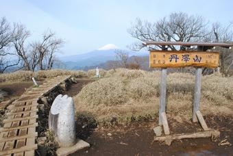 関東/緑の丹沢山
