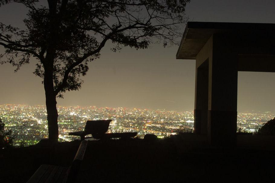 枚岡山展望台と大阪平野の夜景