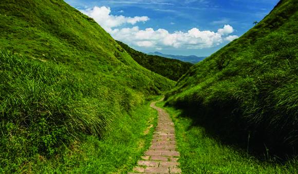 「阿里山の巨木群」と「草嶺古道」を歩く5日間