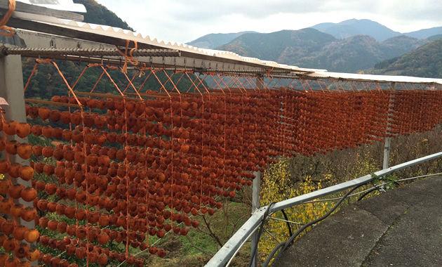 四郷の串柿(イメージ)
