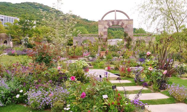 奇跡の星の植物園 屋外ローズガーデン(イメージ)