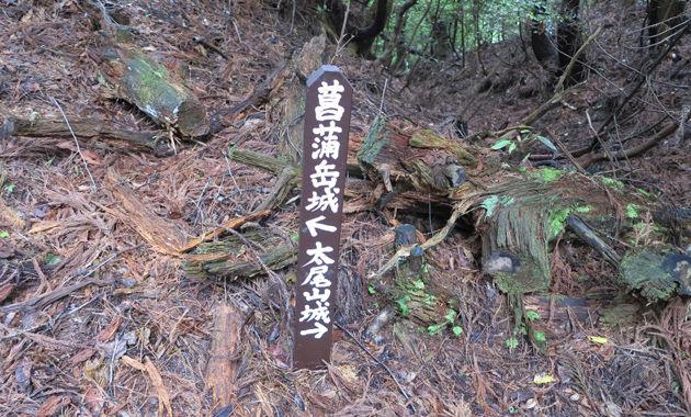 菖蒲嶽城(イメージ)
