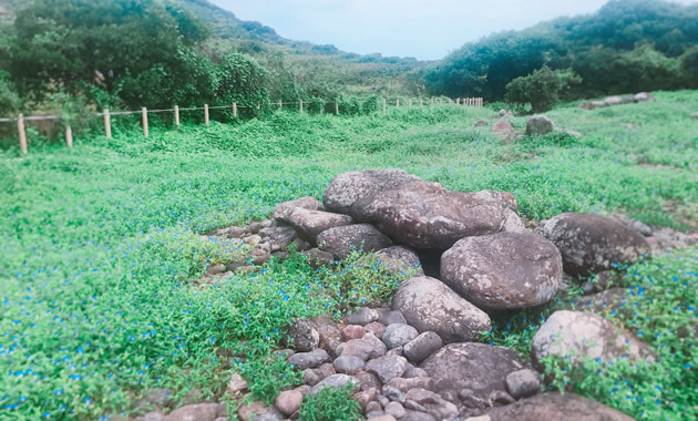 見島ジーコンボ古墳群(イメージ)