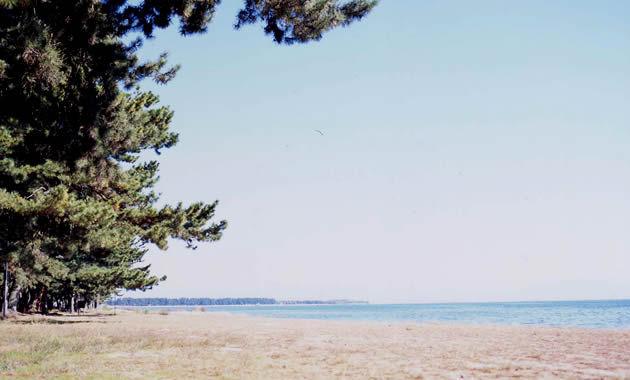 萩の浜(イメージ)