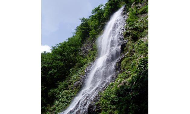 新緑の天滝(イメージ)