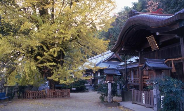 一言主神社 写真提供:一般財団法人奈良県ビジターズビューロー(イメージ)