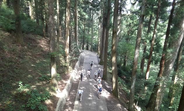 66番・雲辺寺参道(イメージ)