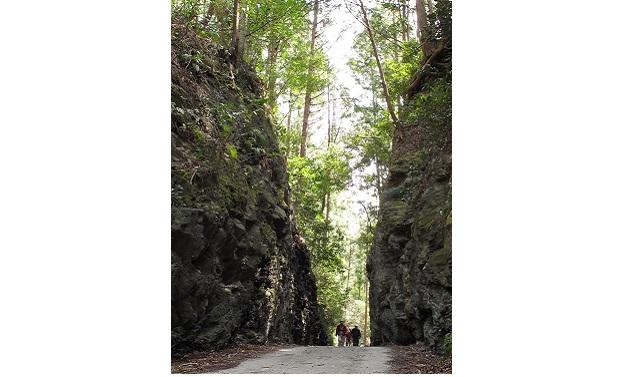 珍布峠(イメージ)<br> 旧若山街道の珍布峠は、高さ10㍍の切りどおしになっている。天照大神の「国分け伝説」がある