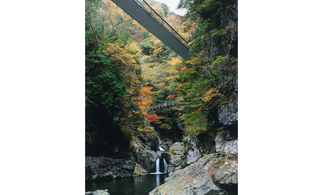 秋のみたらい渓谷(イメージ)
