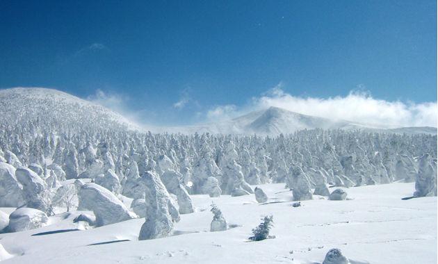 蔵王の樹氷の造形美(イメージ)