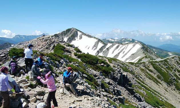 北薬師山頂からの薬師岳(イメージ)
