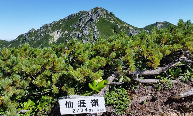 仙涯嶺から見た中央アルプスの山並み(イメージ)