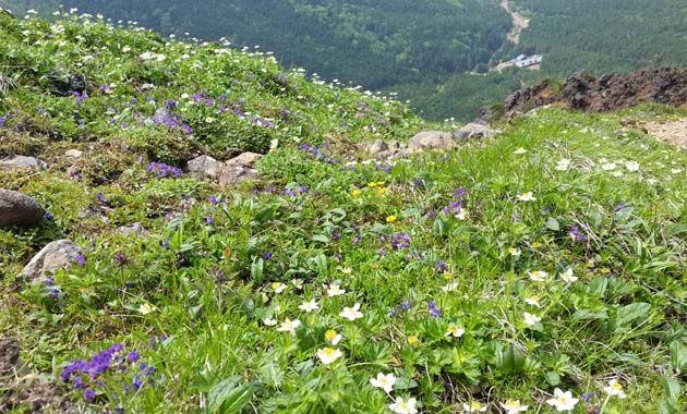 赤岳(写真は7月/イメージ)