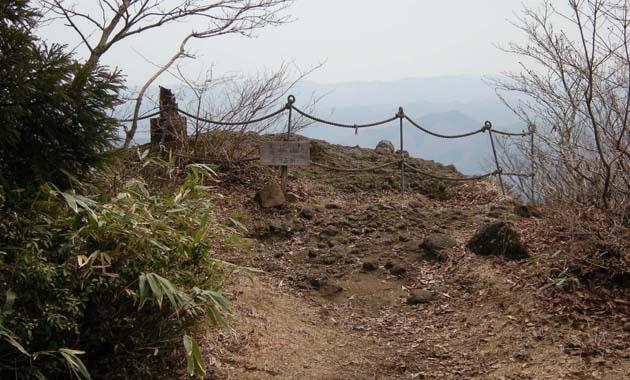 青葉山(写真は4月/イメージ)