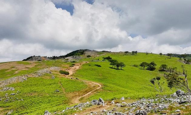 霊仙山特有の広々とした台地(イメージ)
