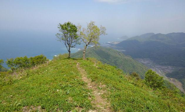 5月上旬の依遅ケ尾山(イメージ)