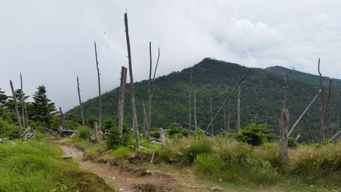 弥山からみた八経ヶ岳(イメージ)