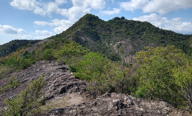 岩が所々むき出しの登山道(イメージ)