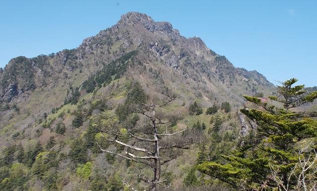 石鎚山の登山道から山頂を望む(イメージ)