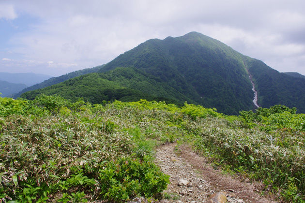 荒島岳への縦走路(イメージ)