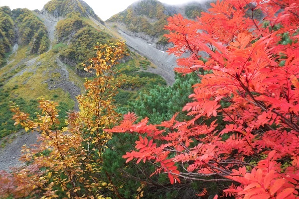 紅葉の山特集