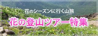 花の登山ツアー特集