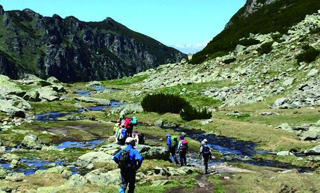 美しい登山道(イメージ)